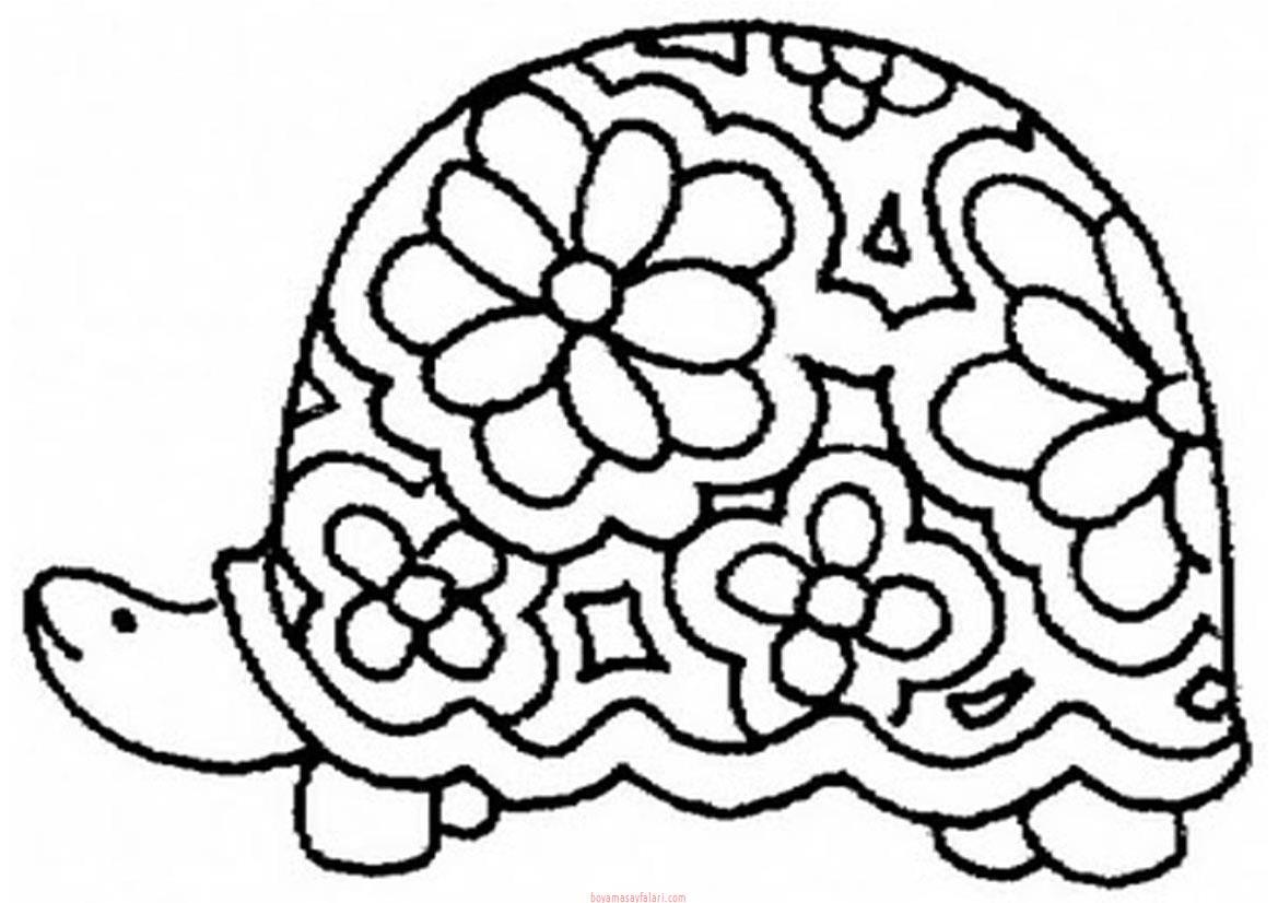 Kaplumbaga Boyama Sayfalari 13 Sinif Ogretmenleri Icin