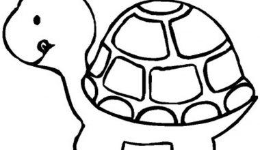 Kaplumbağa Boyama Sayfaları