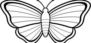 Kelebek Boyama Sayfaları, Kelebek Şablonları