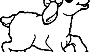Koyun Boyama Sayfaları