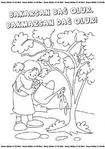Orman Haftası Etkinlikleri Sınıf öğretmenleri Için