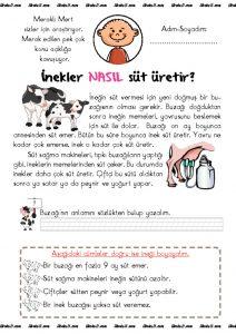 thumbnail of düz yazı inekler