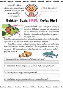 thumbnail of balık