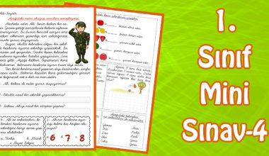 1. Sınıf Mini Sınav -4-