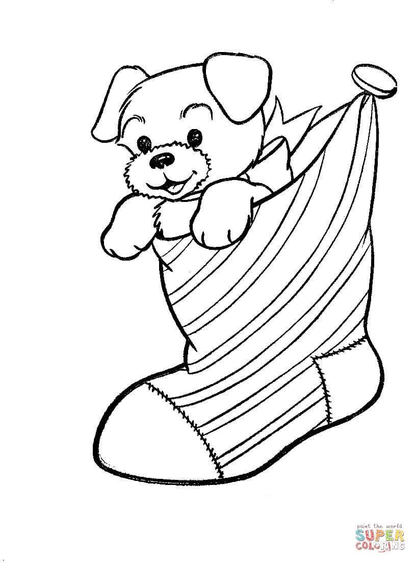 A-Puppy-Dog-İn-A-Christmas-Stocking-Coloring-Page
