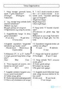 thumbnail of TÜRKÇE DEĞERLENDİRME TESTİ 6