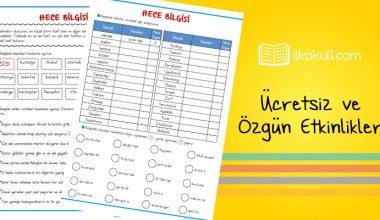3. Sınıf Türkçe Hece Bilgisi Etkinlik Kağıdı