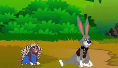 Tavşan ile Kirpi Masalı