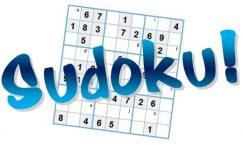 Şekilli Sudoku Kitapçığı Seviye 2