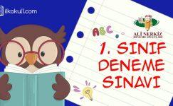 1. SINIF 1. DÖNEM 2. PEKİŞTİRME ETKİNLİĞİ (ANDS1 KDS2)