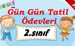 2016-2017 2. Sınıf Gün Gün 1. Dönem Tatil Ödevleri (8. GÜN)