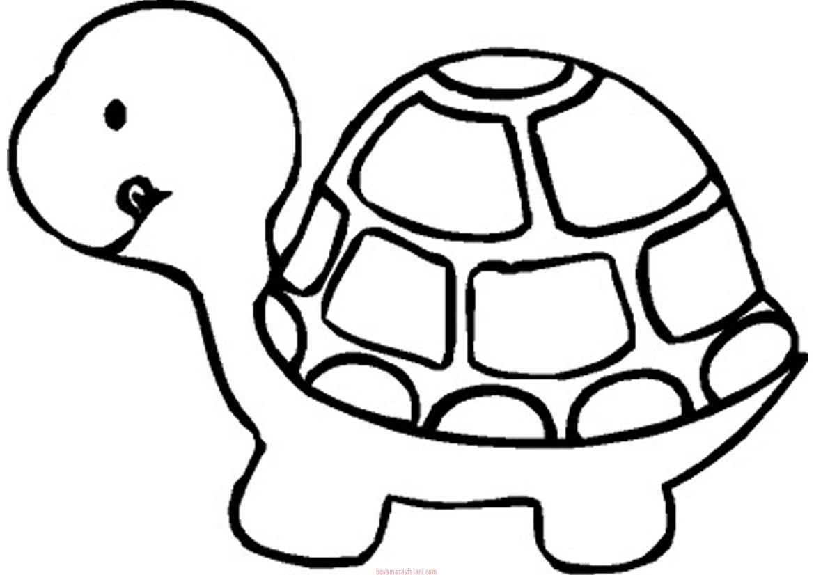 Kaplumbaga Boyama Okul Oncesi Sinif Ogretmenleri Icin Ucretsiz
