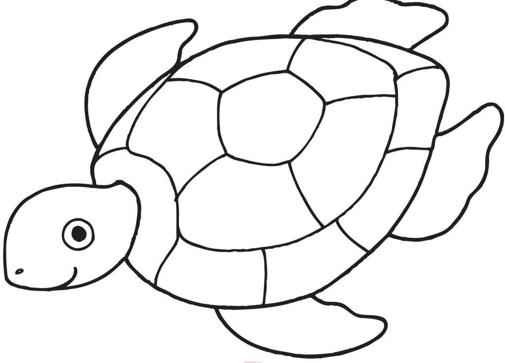 Kaplumbaga Boyama Sayfalari 2