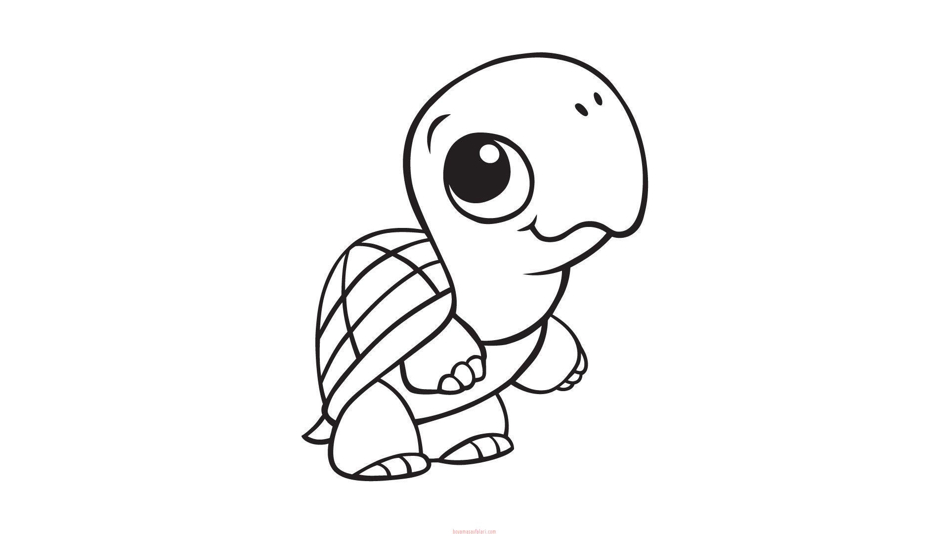 Kaplumbaga Boyama Sayfalari 3 Sinif Ogretmenleri Icin Ucretsiz