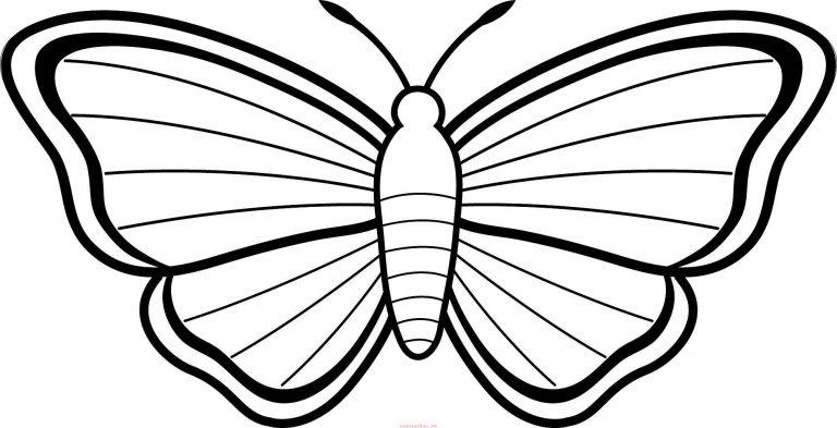 Kelebek Boyama Sayfaları Kelebek şablonları Sınıf