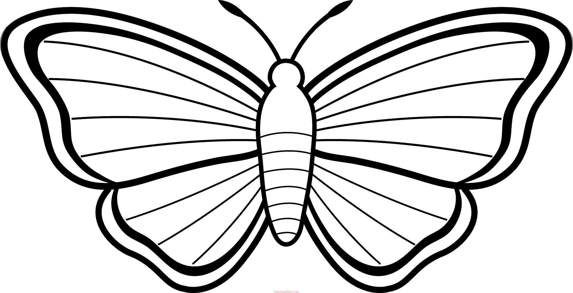 Kelebek Boyama Sayfalari Kelebek Sablonlari Sinif Ogretmenleri