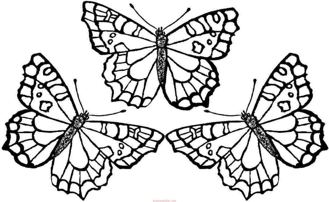 Kelebek Sablonlari 18 Sinif Ogretmenleri Icin Ucretsiz Ozgun