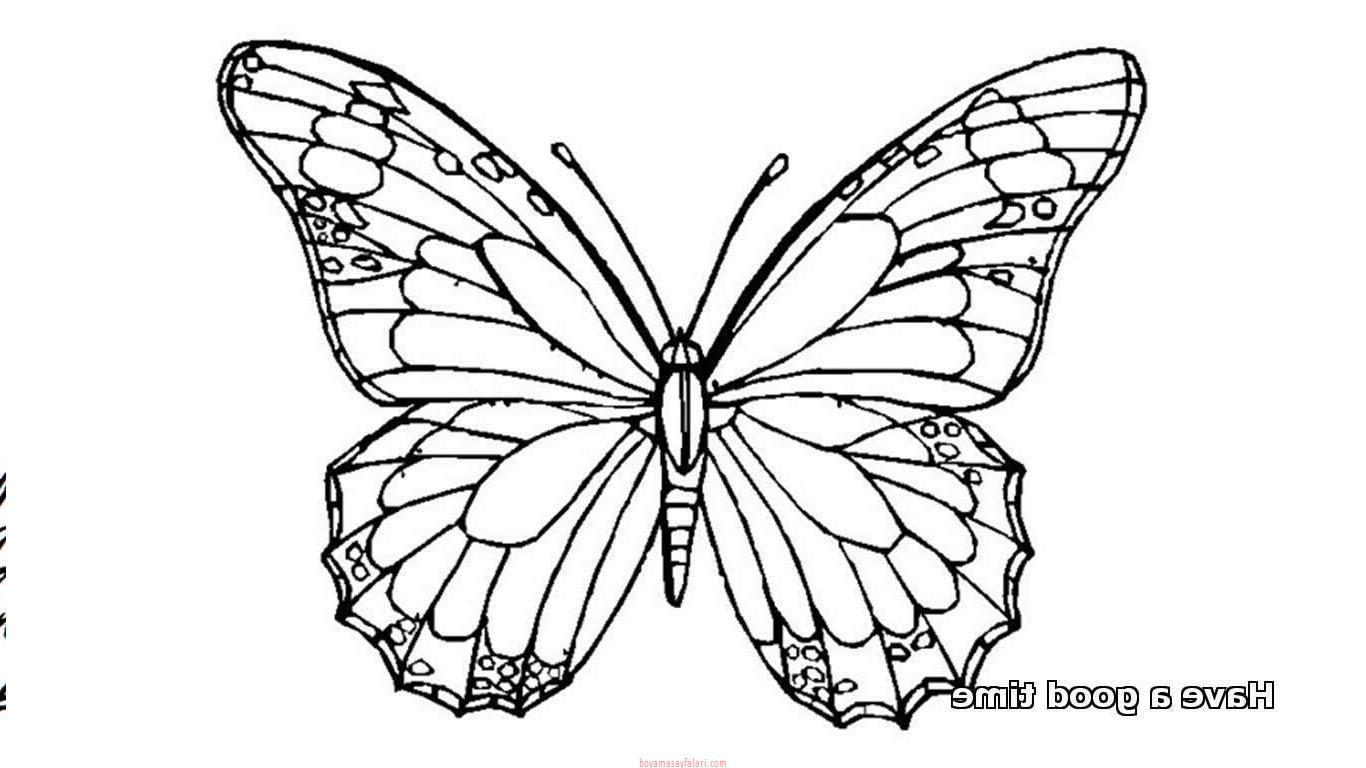 Kelebek Sablonlari 20 Sinif Ogretmenleri Icin Ucretsiz Ozgun