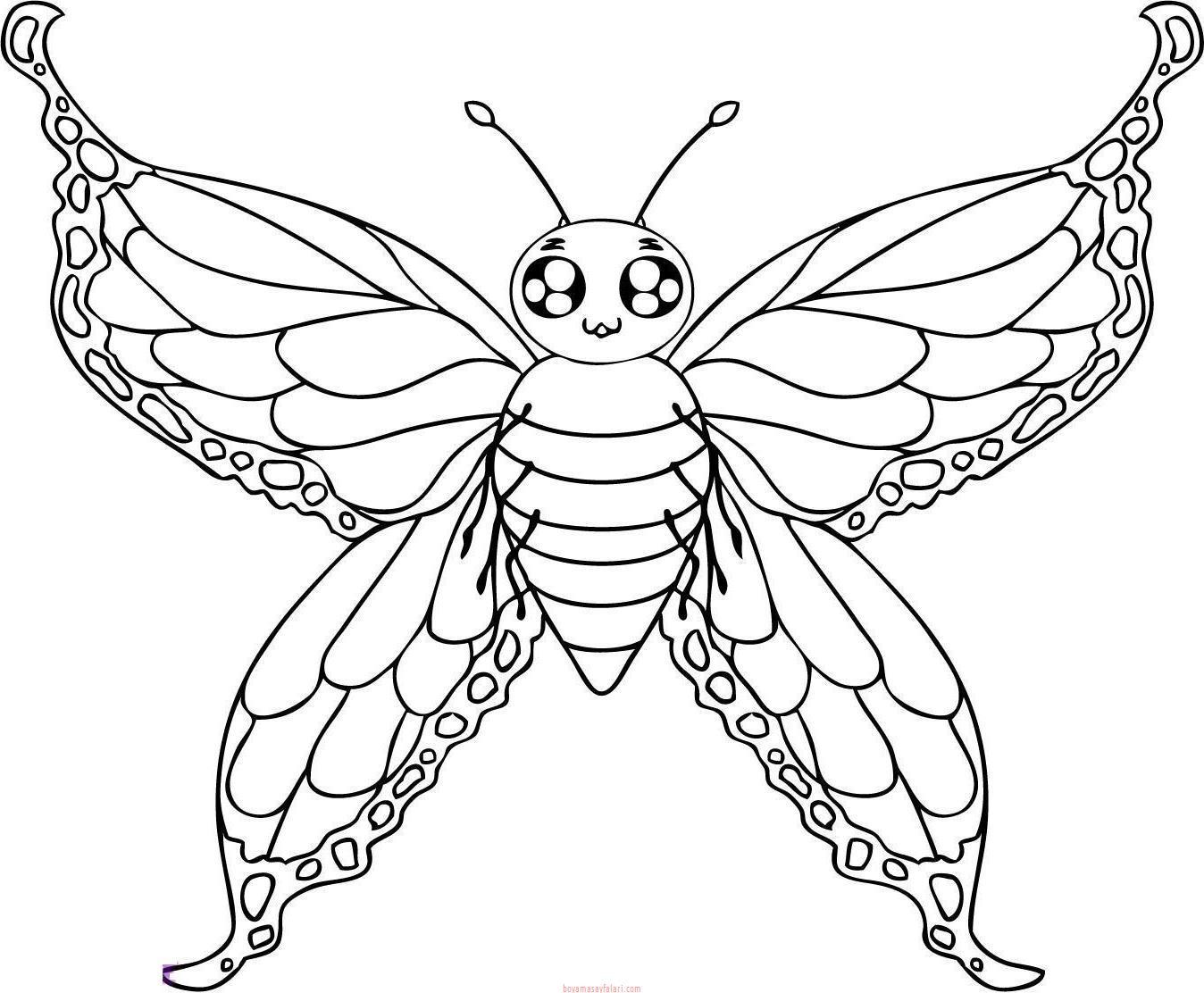 Kelebek Sablonlari 8 Sinif Ogretmenleri Icin Ucretsiz Ozgun