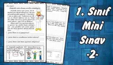 1. Sınıf Mini Sınav -2-