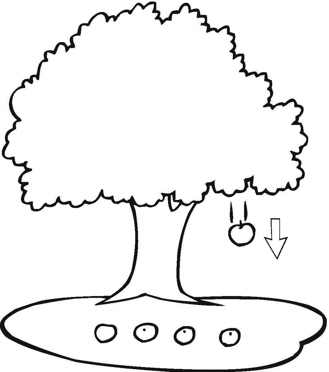 Ağaç Şablonları   Sınıf Öğretmenleri İçin Ücretsiz Özgün ...