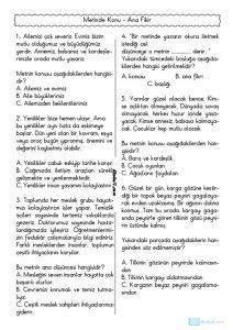 thumbnail of ANA FİKİR ANA DÜŞÜNCE ETKİNLİKLERİ TEST 2