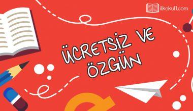 2. Sınıf Türkçe Genel Değerlendirme Testi -5-