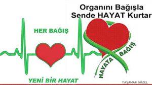 Belirli Gunler Ve Haftalar Organ Bagisi Ve Nakli Haftasi 3 9