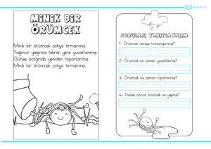 thumbnail of minik bir örümcek etkinlik paketi