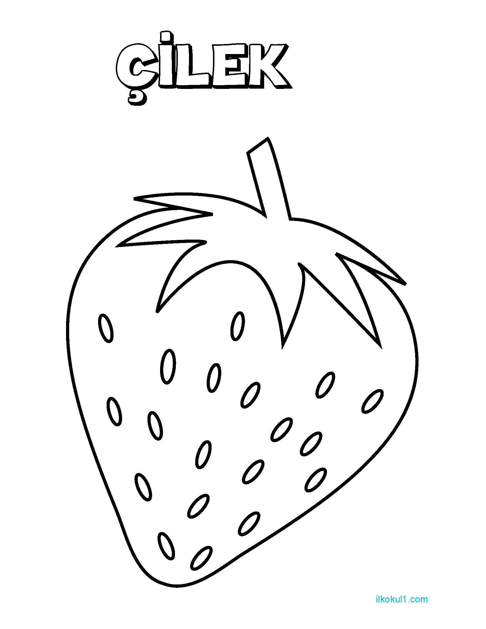 Meyve Boyama Sayfa 4 Sinif Ogretmenleri Icin Ucretsiz Ozgun