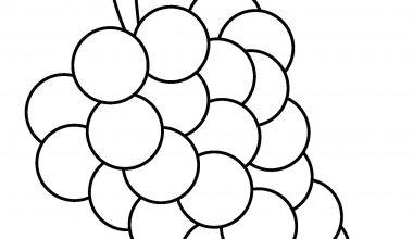 Meyve Sebze Sablonu Sinif Ogretmenleri Icin Ucretsiz Ozgun