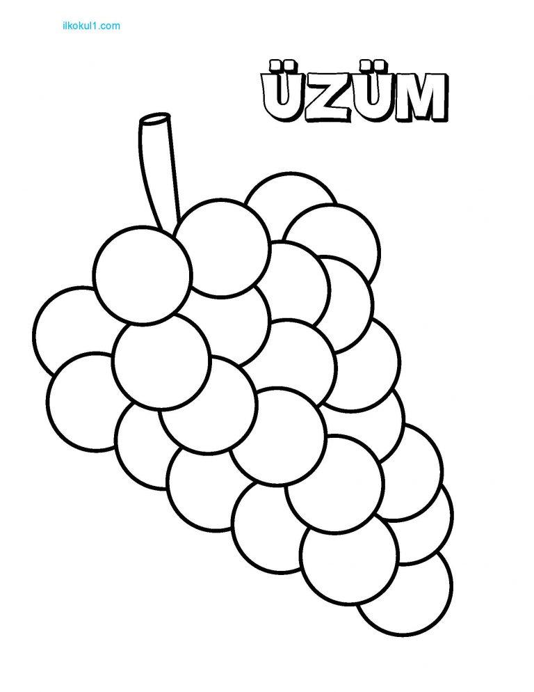 Kayisi Boyama Sayfalari Sinif Ogretmenleri Icin Ucretsiz Ozgun