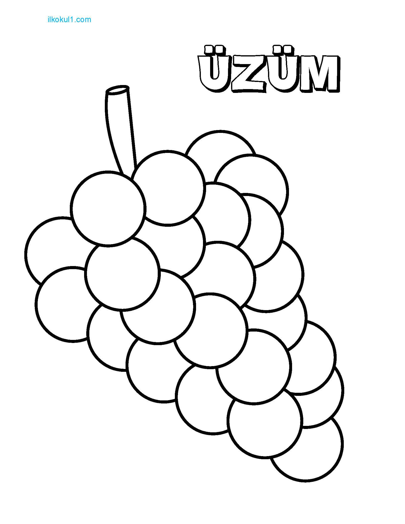 Meyve Boyama Sablonu Sinif Ogretmenleri Icin Ucretsiz Ozgun