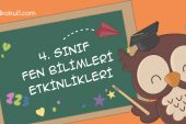SAF MADDE ve KARIŞIM ETKİNLİKLERİ -2-