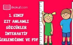 1. Sınıf Zıt Anlamlı Sözcükler -İnteraktif Değerlendirme ve PDF-