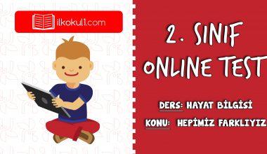 2. Sınıf Hayat Bilgisi -HEPİMİZ FARKLIYIZ-  Online Test