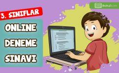 3. Sınıflar Genel Deneme Sınavı -7-