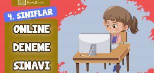 4. Sınıflar Genel Deneme Sınavı -9-