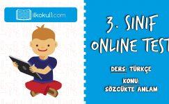 3. Sınıf Türkçe -SÖZCÜKTE ANLAM- Online Test