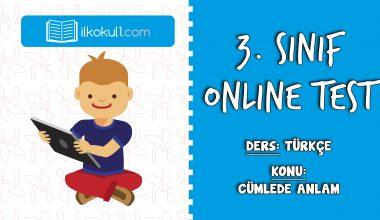 3. Sınıf Türkçe -CÜMLEDE ANLAM- Online Test