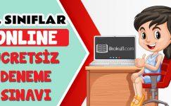 2. Sınıflar 2. Dönem Online Genel Deneme Sınavı -2-