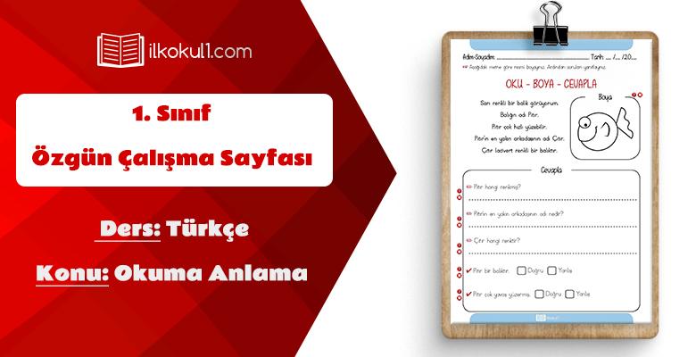 1. Sınıf Türkçe Dersi Okuma Anlama Etkinlik Sayfası