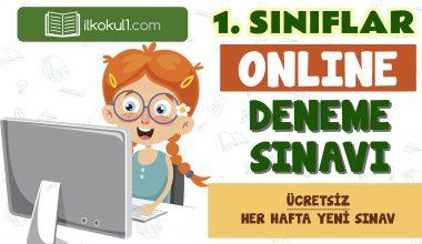 1. Sınıf Online Değerlendirme Sınavı -4-