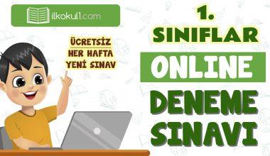 1. Sınıf Online Değerlendirme Sınavı -5-